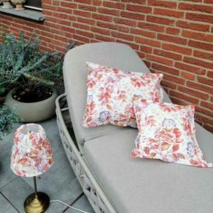 Wintergarten oder Terrasse verschönern Holunderbeere